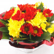Yellow and red flowers — Stock Photo