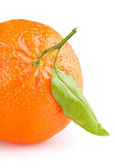 Tangerine with leaf — Stock Photo