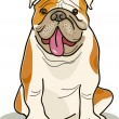 Dog breeds: bulldog - Stock Vector