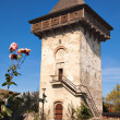 Humor Monastery Tower — Stock Photo #4576118