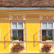 Yellow wall and windows — Stock Photo