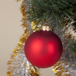 Red Christmas toy on the tree — Stock Photo
