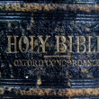 图库照片: Very Holy Bible