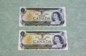 Canadian dollar bills — Stock Photo