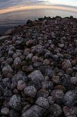 Steinige küste — Stockfoto