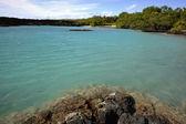 Tropische kust. — Stockfoto
