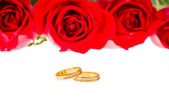 Red roses and wedding rings over white — Stock Photo