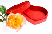 Red yellow rose and a heart shape box — Stok fotoğraf