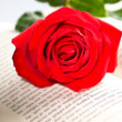 Stock Photo: Red rose over book