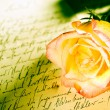 Stock Photo: Red yellow rose over hand written letter