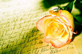 Red yellow rose over a hand written letter — 图库照片