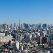 Blue sky panoramic view over downtown Tokyo - Stock Photo