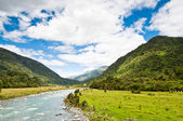 River flowing through a valley — Stock Photo