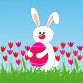 Rabbit with egg — Stock Photo