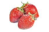 Tres fresas — Foto de Stock