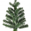Christmas tree — Stock Photo #4434998
