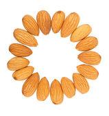 Mandlové ořechy na kruhu — Stock fotografie