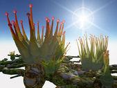 Alien Plants Pikaka — Stock Photo