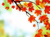 Beautiful Autumn Background. — Stock Vector