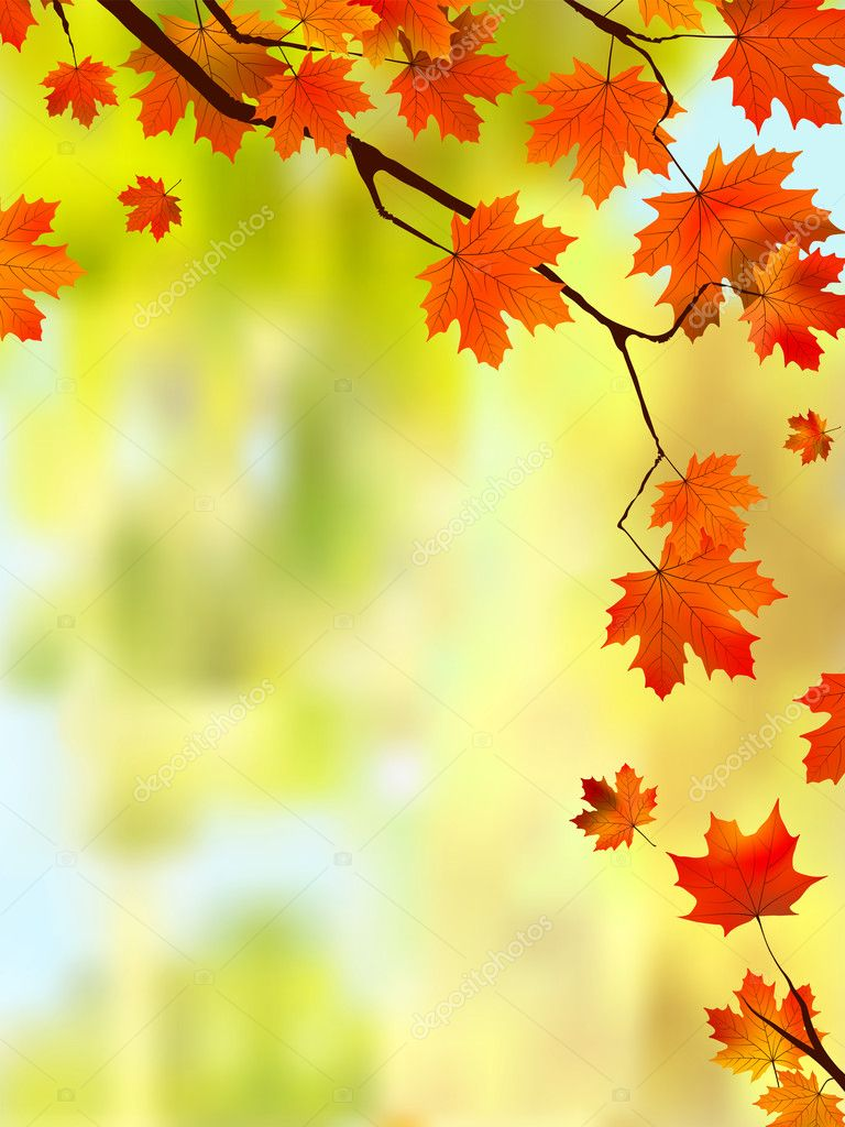 Fall Leaves Page Border http://depositphotos.com/3985070/stock-illustration-Autumn-leaves-border-for-your-text..html