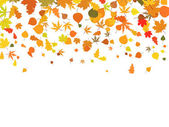Background of autumn leaves. — Stock Vector