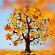 Beautiful autumn tree for your design. — Stock Vector