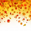 Stock Vector: Fallen autumn leaves background