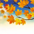 Fall leaves in front of blue sky with clouds. - Stock Vector