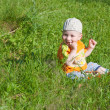 Little Boy Between Grass - Stock Photo
