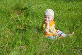 Little Boy Between Grass — Stock Photo
