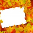 Stock Vector: Thanksgiving Fall Autumn Background