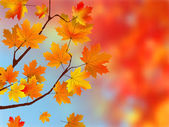 Colorful Autumn Leaves — Vector de stock