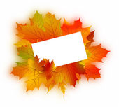 Autumn card on white. — Stock Vector