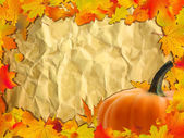 Autumn background with Pumpkin on paper. — Stock Vector