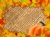 Kleurrijke frame van gevallen herfst bladeren. eps 8 — Stockvector