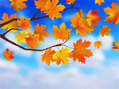 Beautiful Autumn Background against clue sky. — Stock Vector
