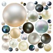 Stock Vector: Collection of color pearls isolated. EPS 8