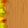 Fall coloured leaves — Stock Vector