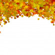 Background of autumn leaves. EPS 8 — Stock Vector