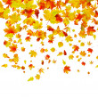 Royalty-Free Stock Vector Image: Background of autumn leaves. EPS 8