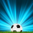 Royalty-Free Stock Vector Image: Football or soccer ball on grass. EPS 8