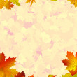 A frame formed by colorful autumn leaves. EPS 8 — Stock Vector #5164839