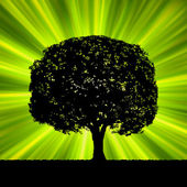 Tree with green burst template. EPS 8 — Stock Vector