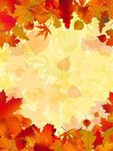 Arka plan sonbahar yaprakları. eps 8 vektör dosyası — Stok Vektör