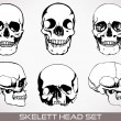Skelett head vector. — Stock Vector
