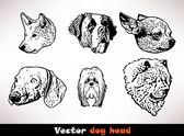 Vector dog head — Stock Vector