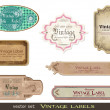 Vintage labels set vector illustration — Stock Vector