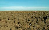 Moist, fertile soil — Stock Photo
