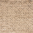 Grunge old bricks wall texture — Foto Stock