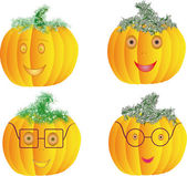 Pumkin — Stock Vector